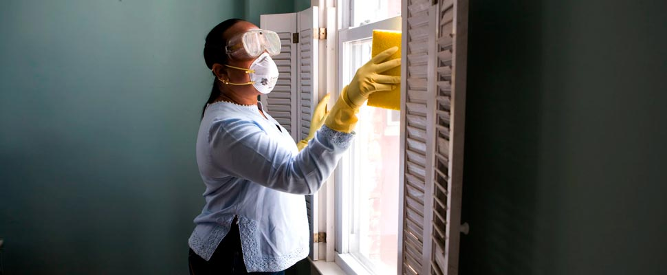 Domestic worker cleaning a window