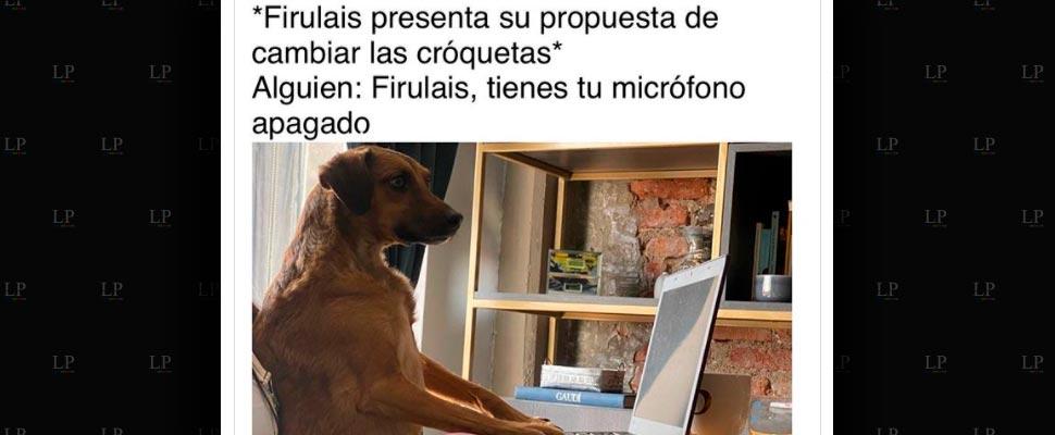 Mejores memes de perritos