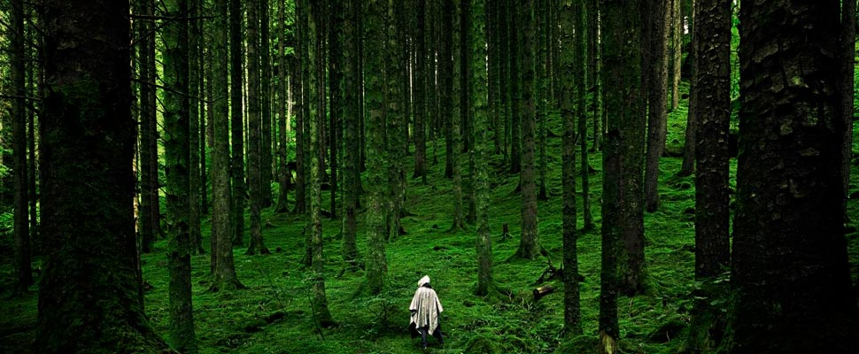 Person walking through the forest