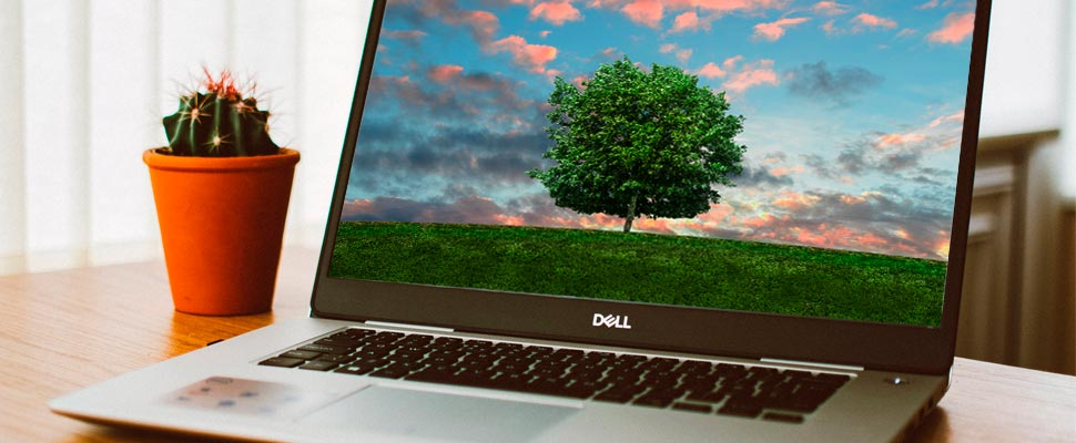 Computer showing a tree