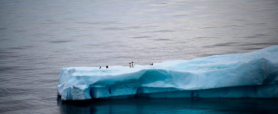 Vista de la Antártida.