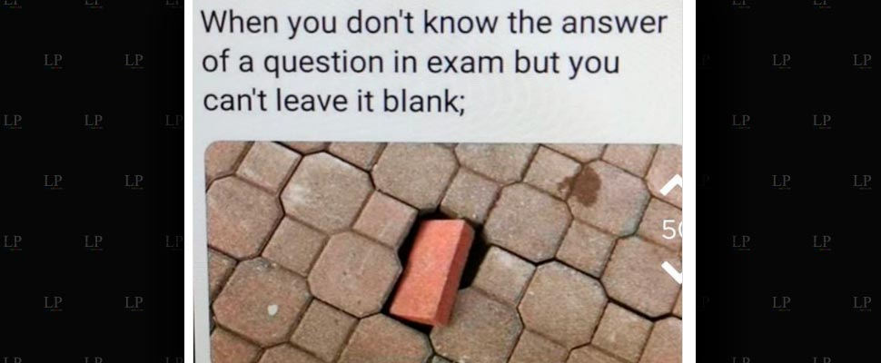Have fun with these education memes