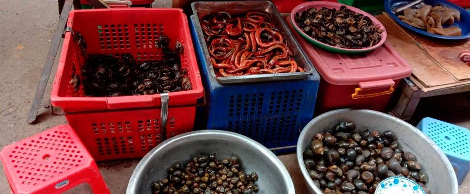 Tienda de mercado en Camboya.
