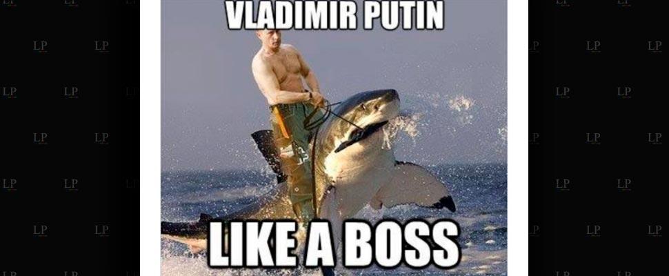 The best Putin memes
