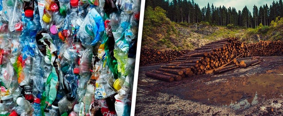 Plastic bottles and deforestation