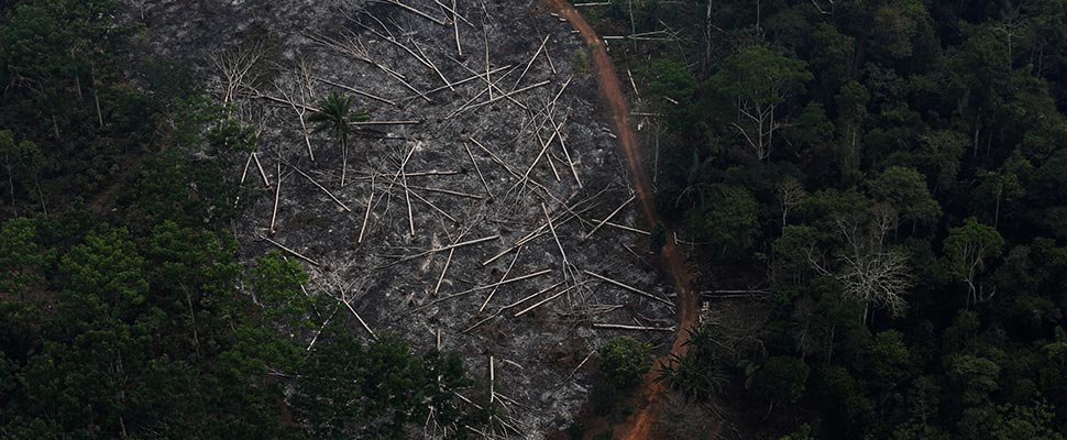 Aerial view of a deforested parcel of the Amazon in the Bom Futuro National Forest, in Porto Velho, Brazil.