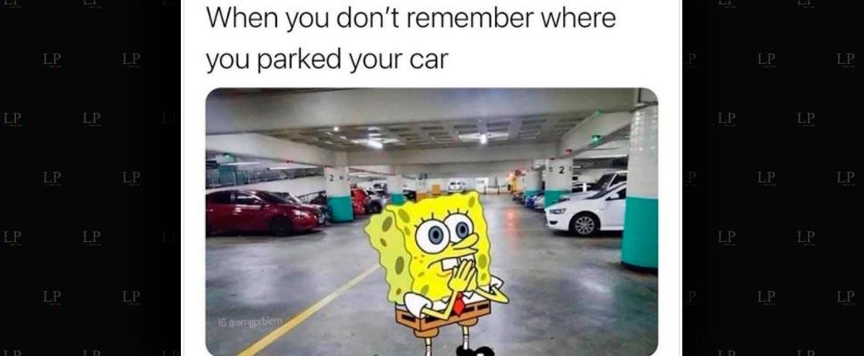 Best Sponge Bob Square Pants Memes