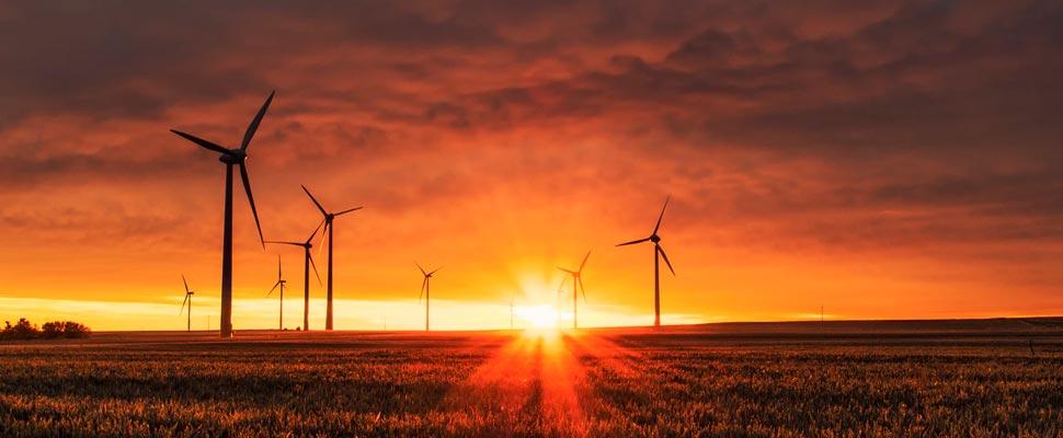 5 formas de ahorrar electricidad y disminuir el gasto