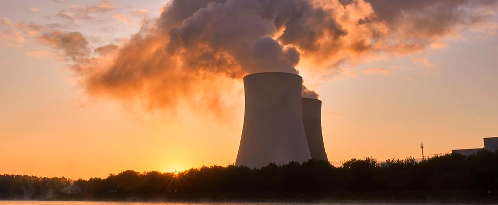 Nuclear energy in China, animal cloning and more environmental news