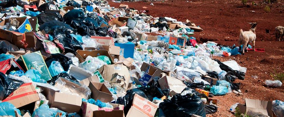 ONU asegura que el plástico afecta a los más vulnerables y más noticias de medio ambiente