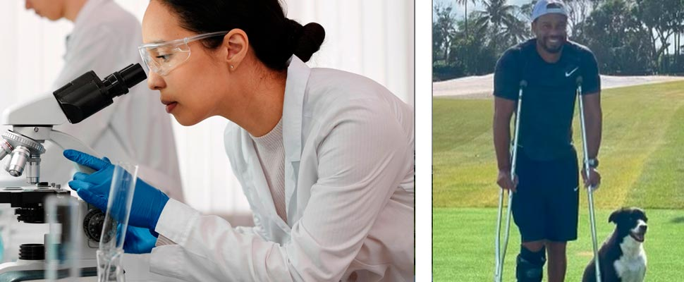 Woman inside a laboratory using a microscope and Tiger Woods