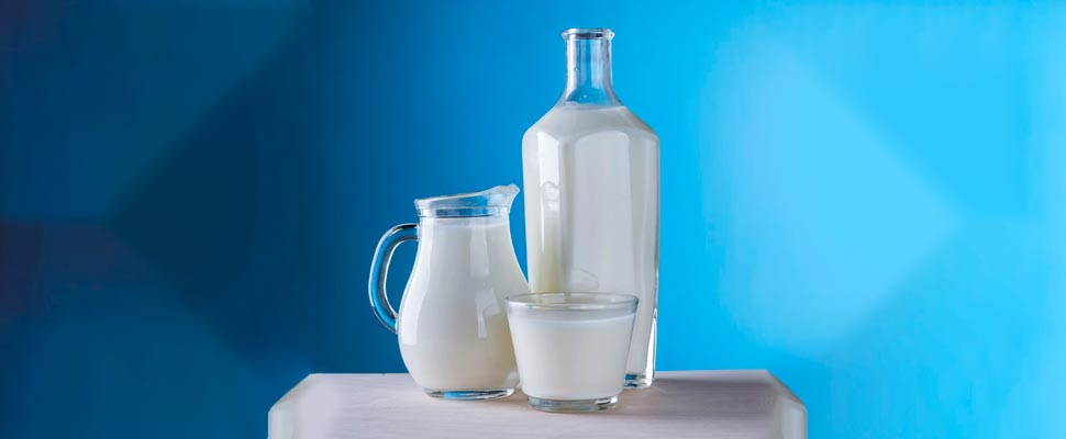 Decreasing the Consumption of Milk Helps the Environment?