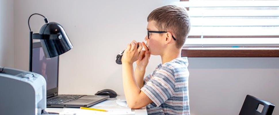Niño estudiante mirando su computador