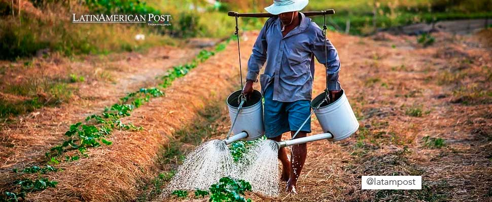 Agroecología: el futuro de tu alimentación