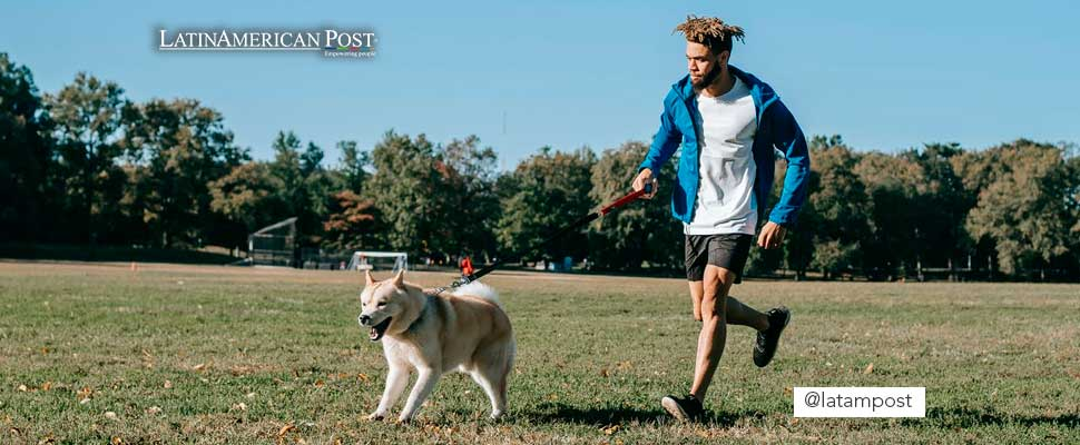 ¿Cómo hacer deporte con tu perro?