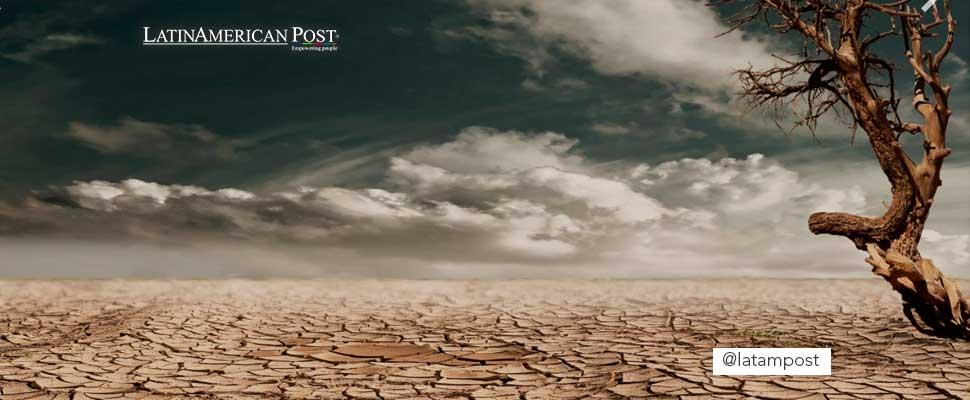 ¿El cambio climático se puede frenar?