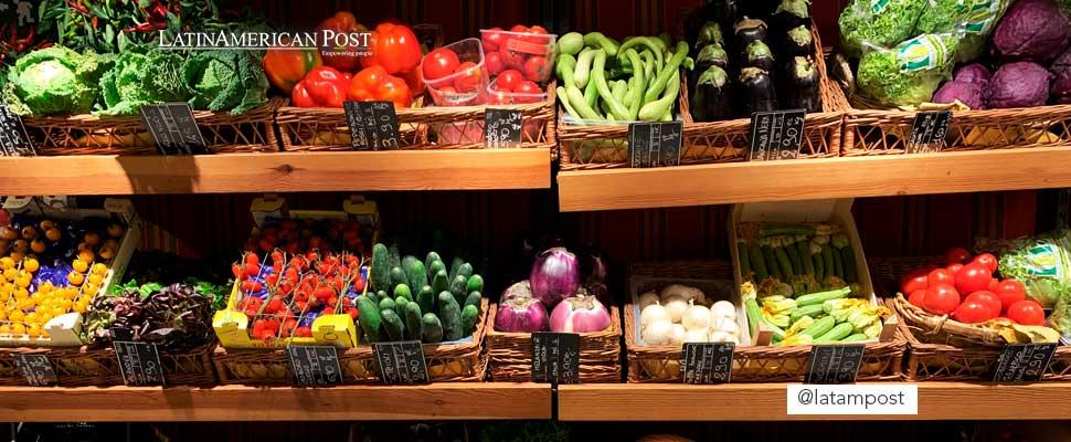 ¿Nos quedaremos sin comida para el 2050?
