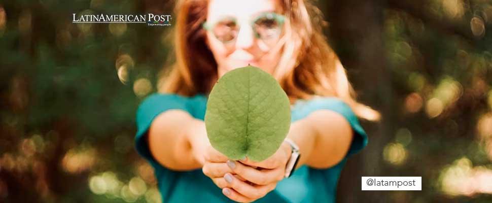Mujer sosteniendo una hoja de árbol