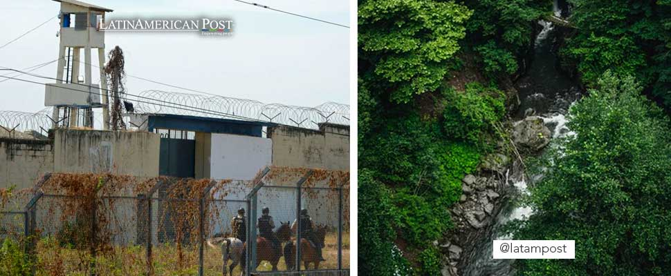 Riot in Ecuador jail and aerial view of a forest