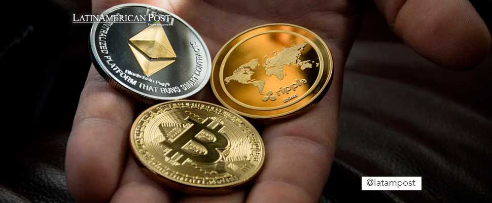 Person holding three different cryptocurrencies