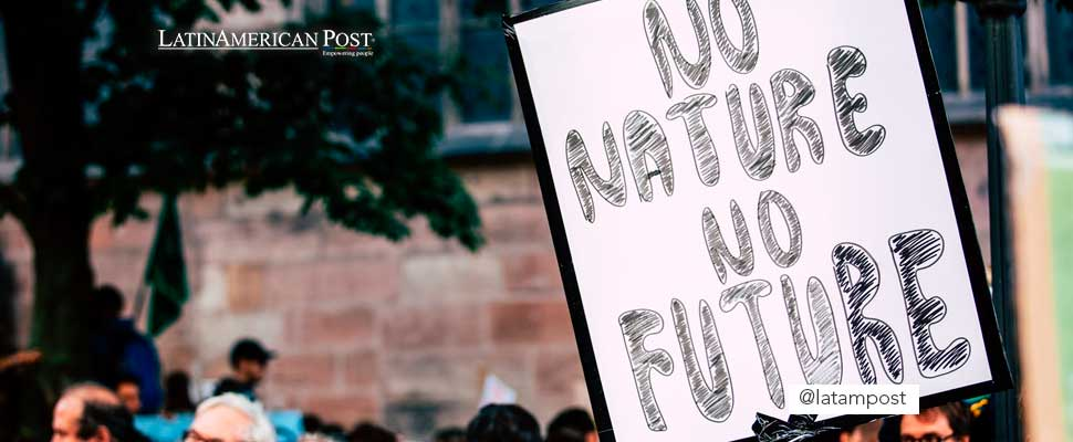 Poster with the phrase 'No Nature No Future'
