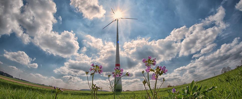 Chile: ¿Cómo evolucionar en energías limpias?