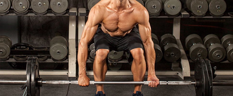 Seven tips for body building