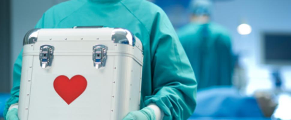 Holanda y la donación de órganos