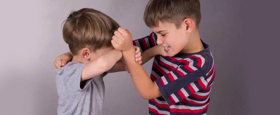 Can being bullied by siblings cause psychiatric disorders?