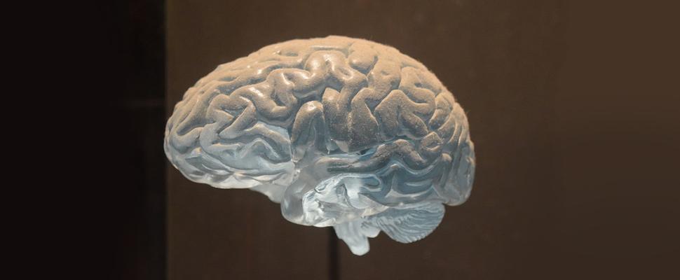 ¿Está su cerebro en peligro por la contaminación?