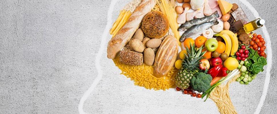 ¿Cuáles son los alimentos que ayudan a tu memoria?