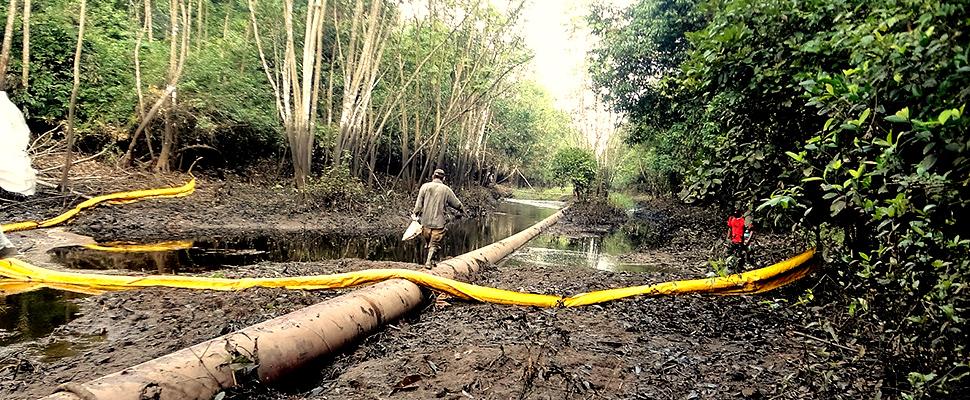 Colombia: Derrame de petróleo mató a 'Caño Muerto'