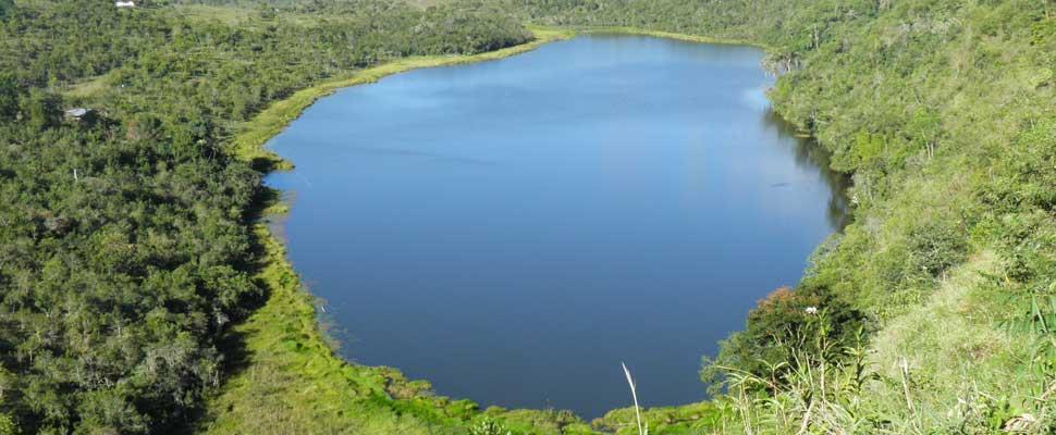 Los lagos que sobreviven son aquellos ubicados en zonas protegidas o de pu00e1ramos donde el Estado no ha permitido intervenciu00f3n.