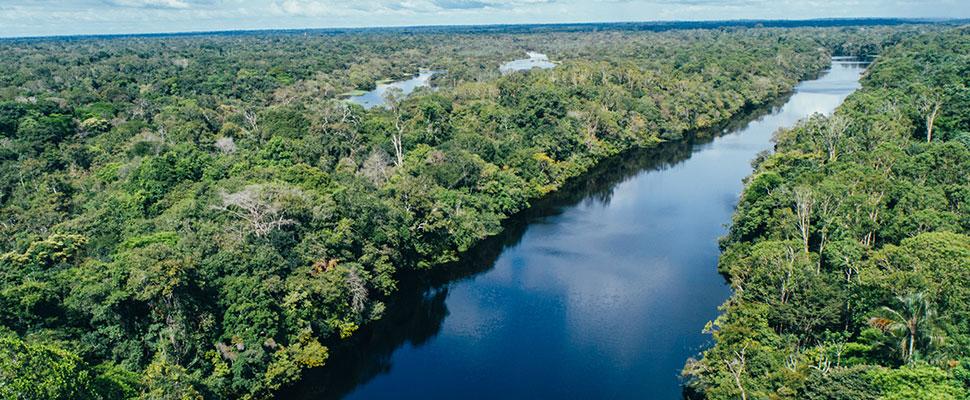 ¿Cuánto tiempo le queda al Amazonas? En solo 18 años podría tener daños irreversibles