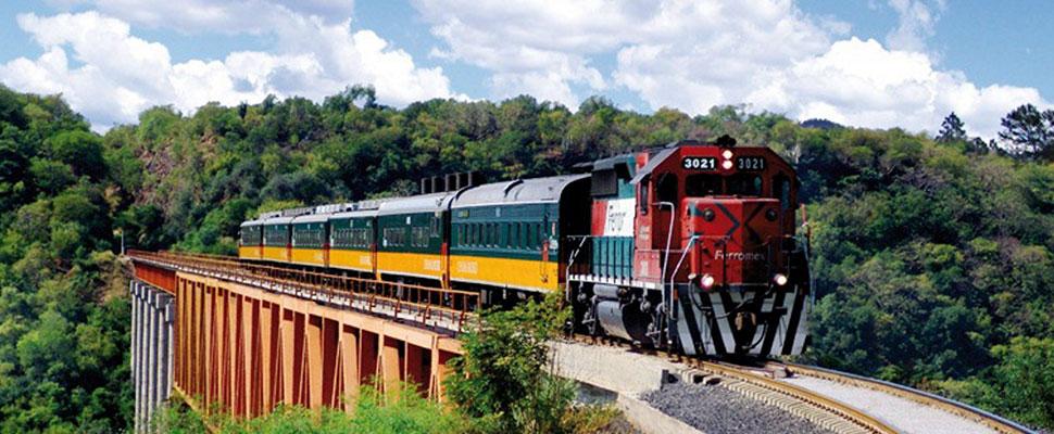 Conoce a Chepe, el espectacular tren del norte de México