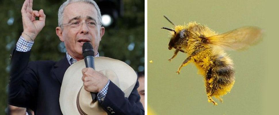 ¿Bioterrorismo?: Las abejas no son petristas y tampoco son uribistas