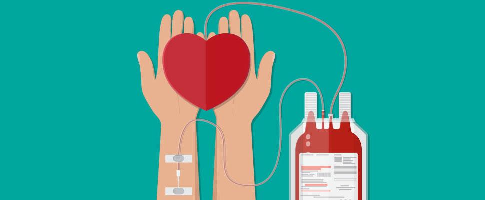 Conozca mitos y verdades sobre la donación de sangre