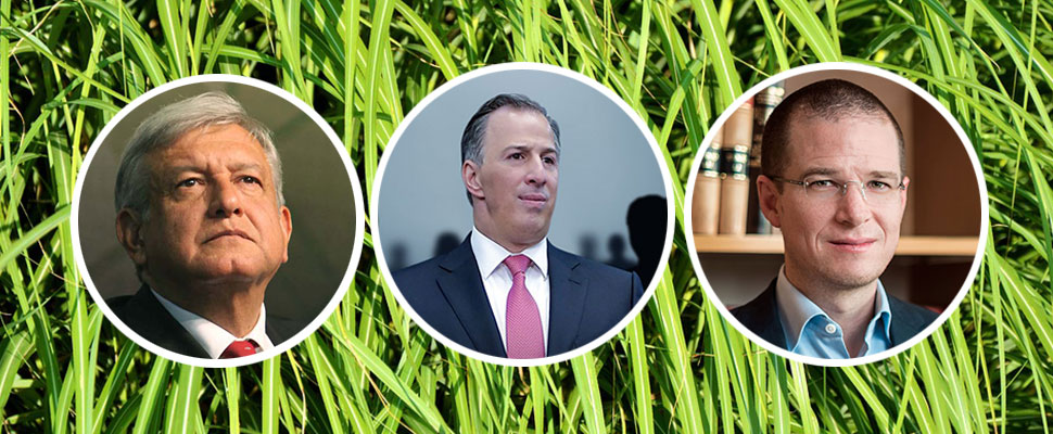 Mexico Elections 2018: What is the environmental policy of the presidential candidates?