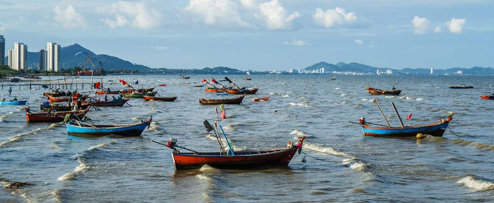 Pesca ilegal: El negocio millonario que pone en riesgo cientos de vidas humanas