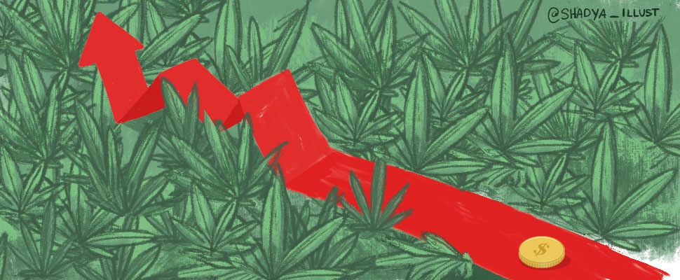 The economic impacts of the legalization of marijuana in Uruguay