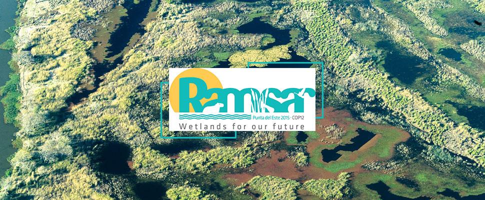 Convención Ramsar, un tratado con el que los países latinos se comprometen a proteger sus humedales