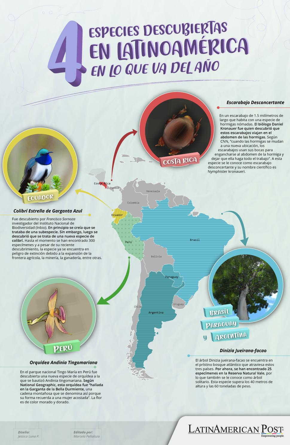 4 especies descubiertas en Latinoamérica en lo que va del año