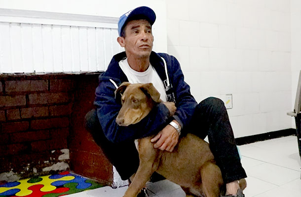 Dogs, cats and homeless people in the same shelter