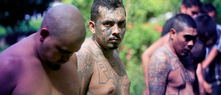 Members of the 'Maras Salvatruchas' arrested by the police of El Salvador