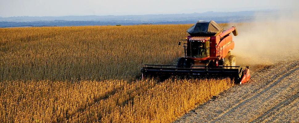 Máquina recogiendo la cosecha de soja en Brasil