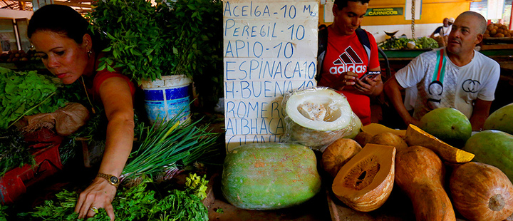 Vegetable sellers work at their stall at a fresh products market in Havana, Cuba July 30, 2019